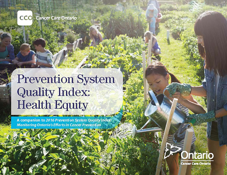 Prevention System Quality Index: Health Equity Report
